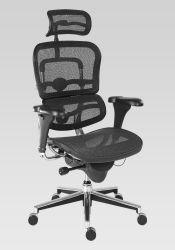 Kancelářská židle - Ergohuman