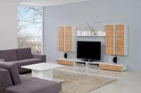 Sektorová obývací stěna - Trend č.01
