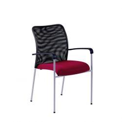 Jednací židle s područkami - Triton NET